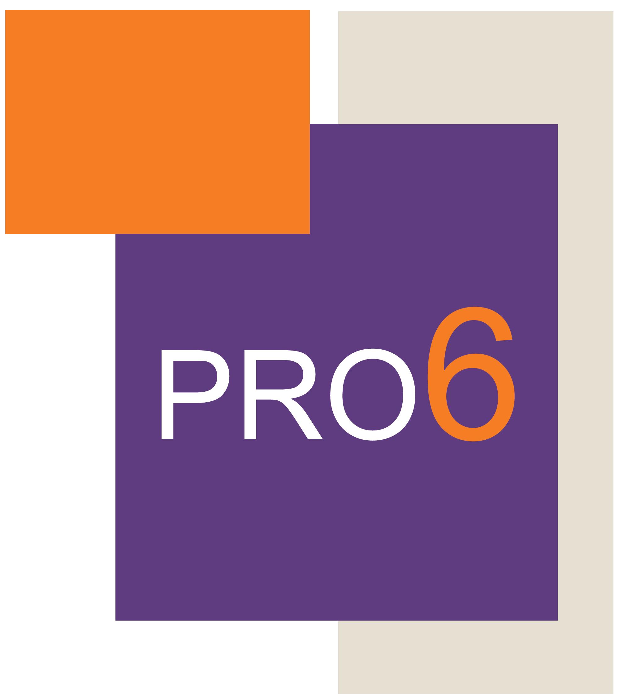 Pro6 jeugdhulpverlening